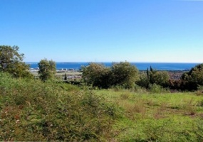 Vente terrain Mandelieu - Rare et magnifique terrain de 1677m² en pente douce bénéficiant d'un shon de 221m².